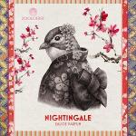 Nightingale de Zoologist - Un símbolo de Chypre