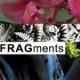 Visita virtual en FRAGments 2015: Parte uno