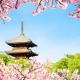 Un Paseo Fragante por Kyoto