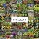 Documentando aromas: Próximo documental 'Ssmellss'